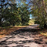Cleaner Greener Quincy: Billings Creek Salt Marsh Trail